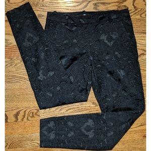 H&M Black Pants Jacquard-Patterned Black on Black